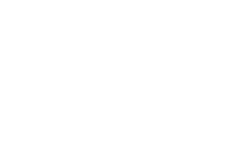 family dispute resolution group